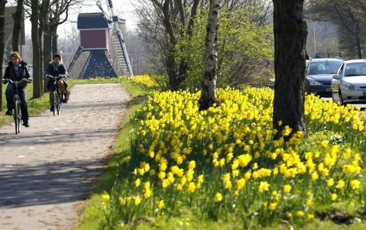 Afbeeldingsresultaat voor zonnige lentedag