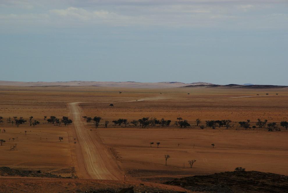 Foto Een Weg Banen Door De Woestijn Van Hansdunsbergen