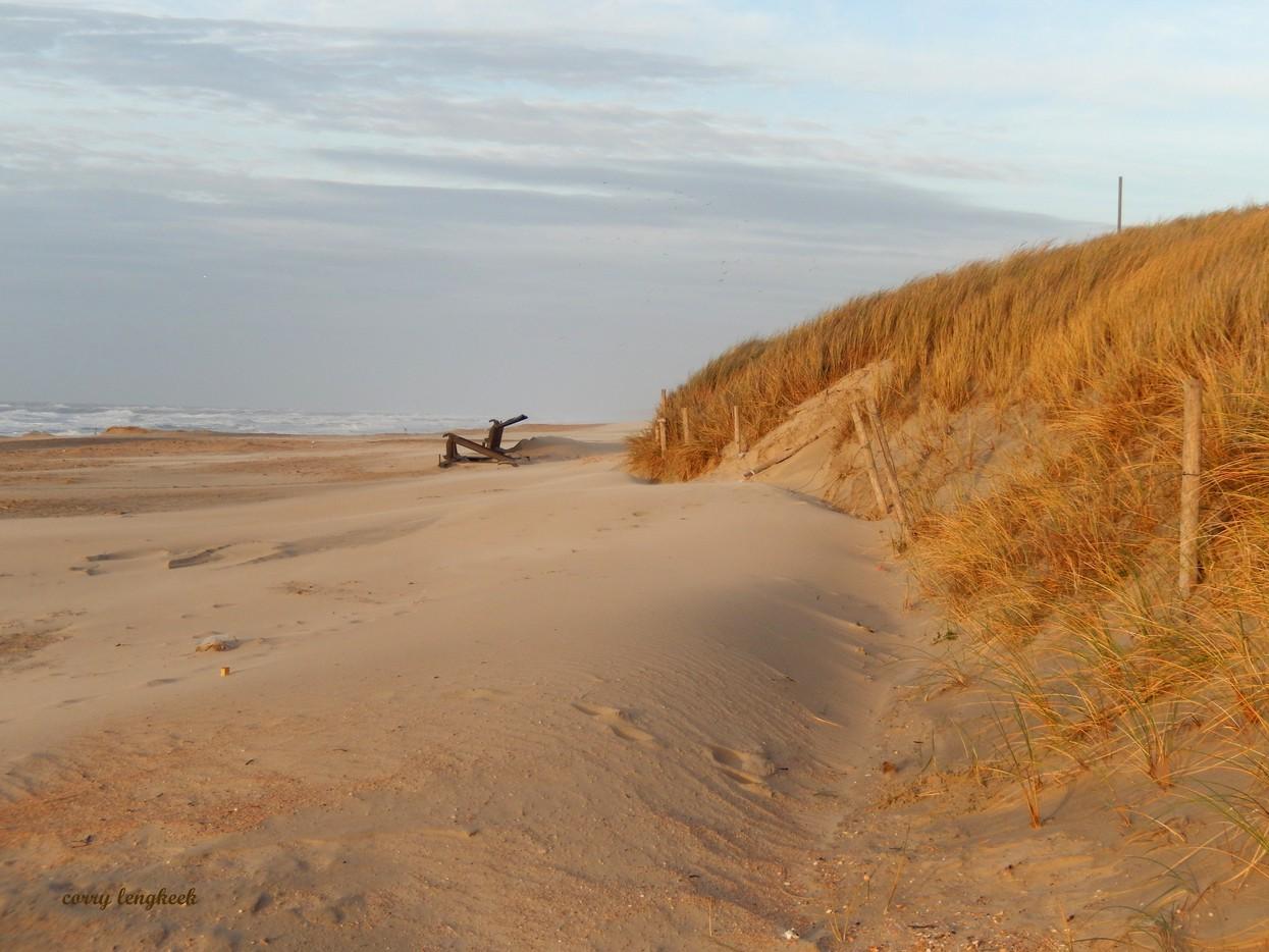 afbeelding winter duinen