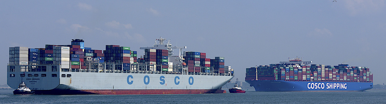 Foto COSCO IN and OUT door ARNOWEL