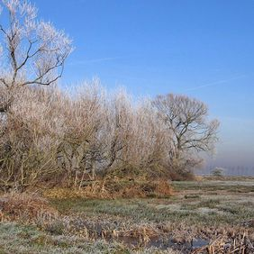 Foto Winters landschap door zon123