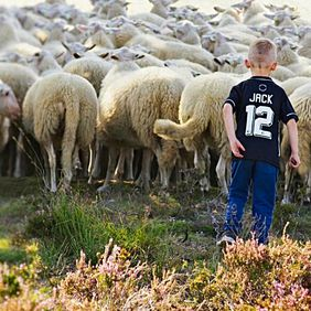 Foto Jack of all trades door bahappy1