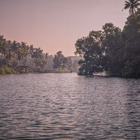 Foto Sunrise on Kerala Backwaters door stephv